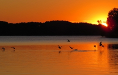 Jezioro Drawsko - Zatoka Drahimska