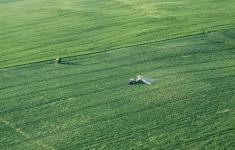 Krajobraz rolniczy w okolicach Redła