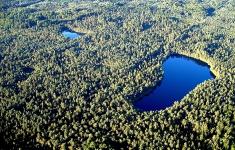 Zespół Przyrodniczo-Krajobrazowy Karsibór