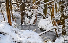 Zima na Pojezierzu Drawskim