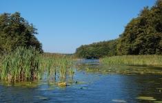 Jezioro Czaple