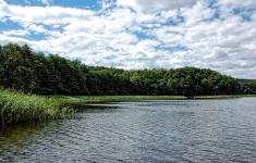 Jezioro Kłokowskie