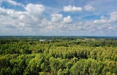 Widok z wieży obserwacyjnej na Wolej Górze