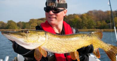 Rozpoczęcie sezonu wędkarskiego. Sprawdź wymiary i okresy ochronne ryb.